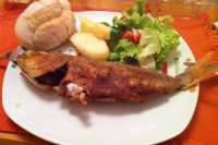 img_Fish meal